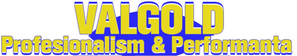 VALGOLD SERVICE BOLINTIN